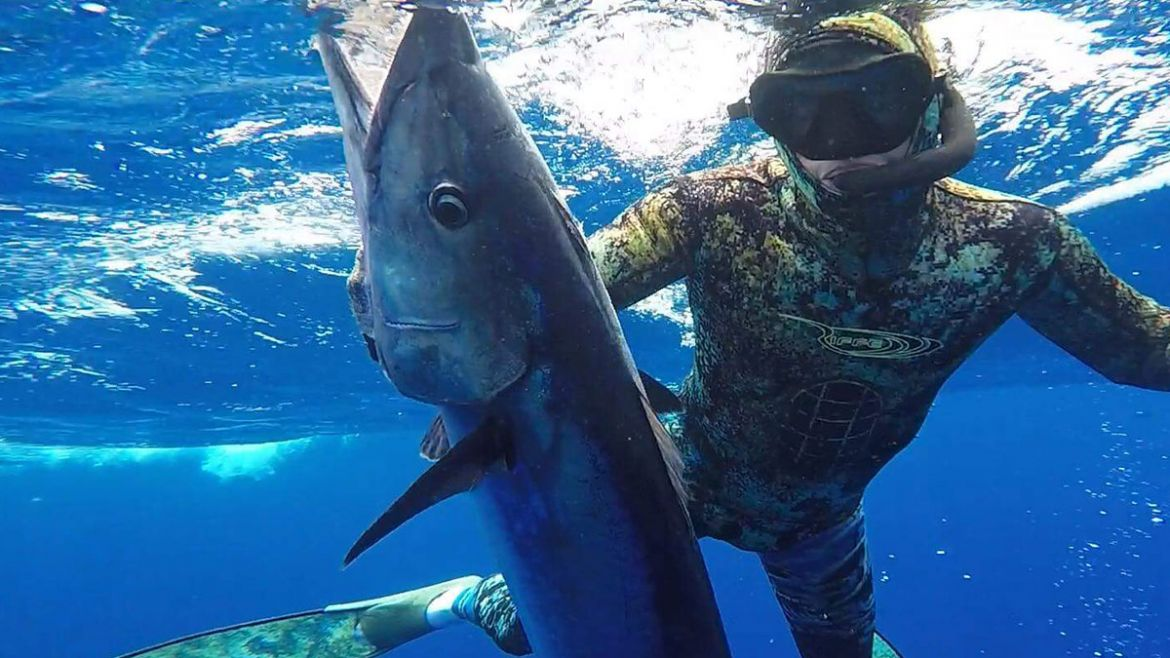HUNTING PELAGICS ON SPEARFISHING